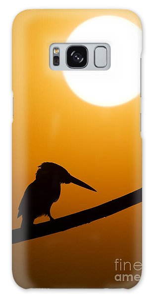 Kingfisher Sunset Silhouette Galaxy Case