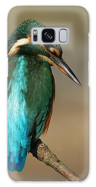 Kingfisher1 Galaxy Case