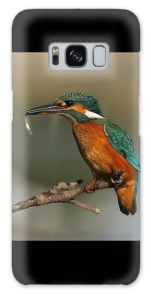 Kingfisher2 Galaxy Case