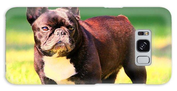King's Frenchie - French Bulldog Galaxy Case