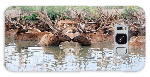 Kissing Elk Galaxy Case by Mark McReynolds