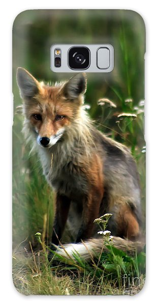 Haybale Galaxy Case - Kit Red Fox by Robert Bales
