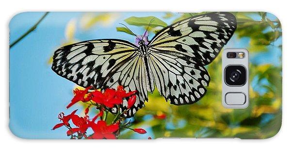 Kite Butterfly Galaxy Case