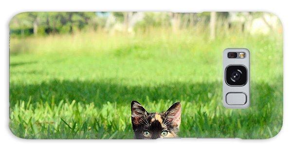 Kitten Galaxy Case by Carsten Reisinger