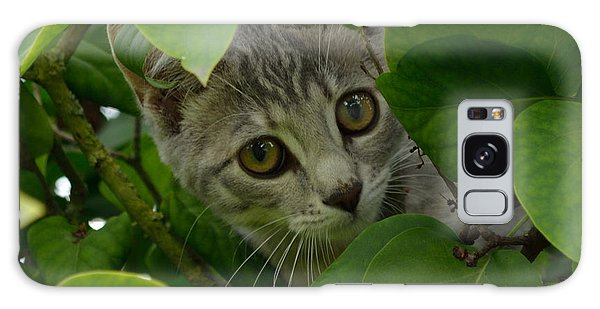 Kitten In The Bushes Galaxy Case