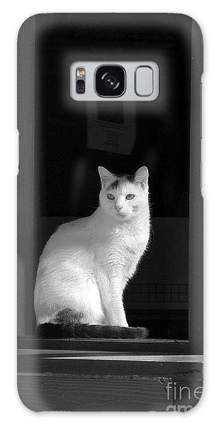 Kitty In The Window Galaxy Case