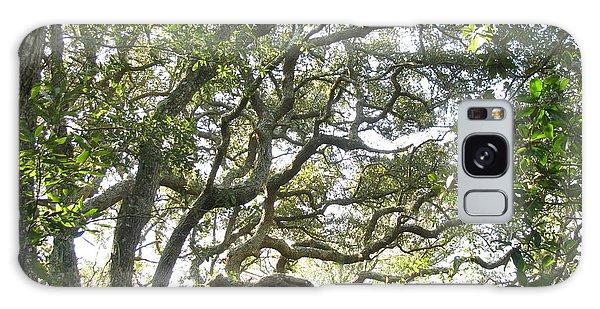 Knarly Oak Galaxy Case by Ellen Meakin
