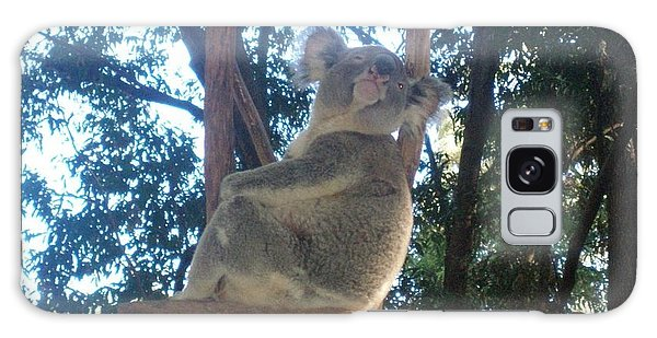 Koala Bear In Australia Galaxy Case