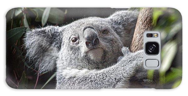 Koala Galaxy Case - Koala Bear by Tom Mc Nemar