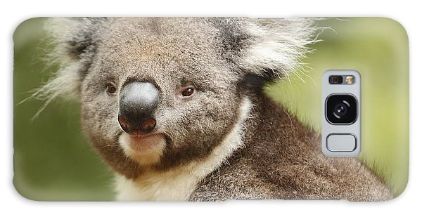 Koala Galaxy Case by Craig Dingle