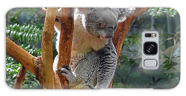 Koala Galaxy Case