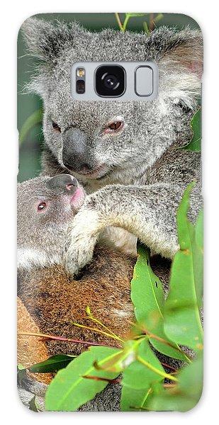 Koalas Galaxy Case by Bildagentur-online/mcphoto-schulz