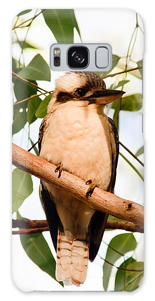 Kookaburra 2 Galaxy Case