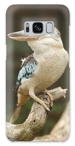 Kookaburra Galaxy Case by Craig Dingle