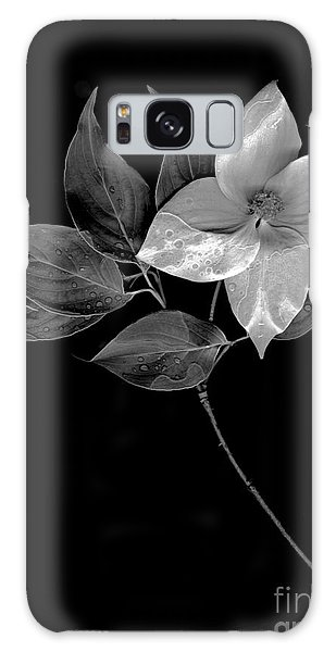 Kousa Dogwood In Black And White Galaxy Case