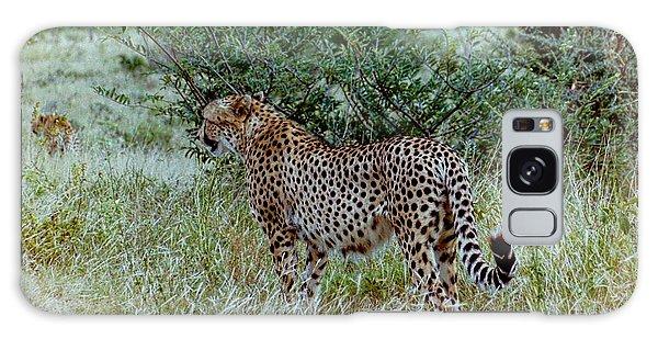 Krugger Cheetah Galaxy Case