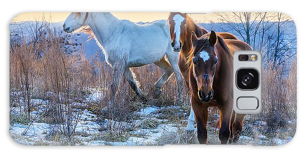 Ky Wild Horses Galaxy Case