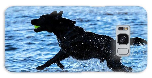Labrador On The Run Galaxy Case by Eleanor Abramson