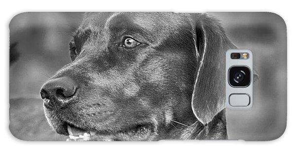 Labrador Sweetie Galaxy Case