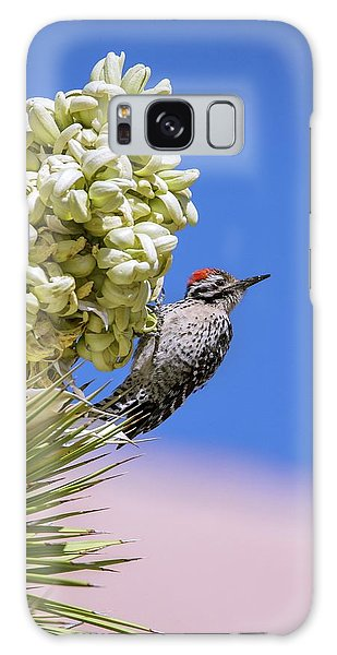 Desert Flora Galaxy Case - Ladder-backed Woodpecker Feeding by Bob Gibbons/science Photo Library
