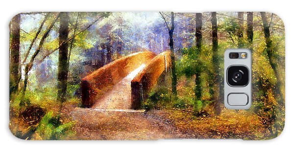 Lady Bird Johnson Grove Bridge Galaxy Case