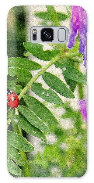 Lady Bug Among The Wild Flowers Galaxy Case by Paula Tohline Calhoun