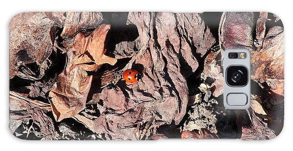 Galaxy Case featuring the photograph Lady Bug In Spring by Ann E Robson