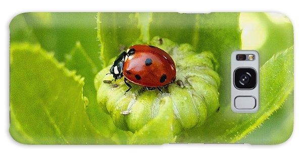 Lady Bug In The Garden Galaxy Case by Amy McDaniel