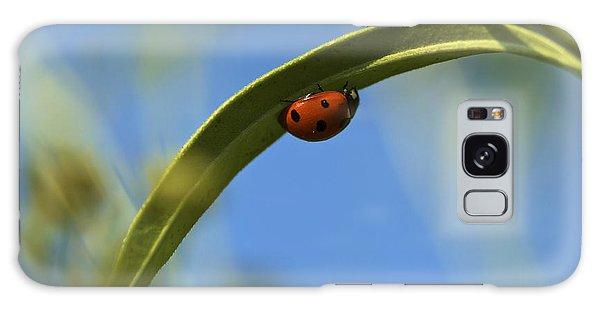 Lady Bug Lady Bug Galaxy Case