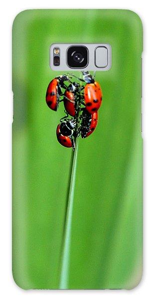 Lady Bug Social Galaxy Case