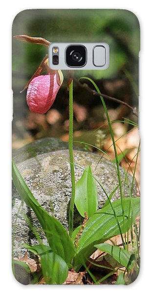 Lady Slippers At Moore State Park 3 Galaxy Case