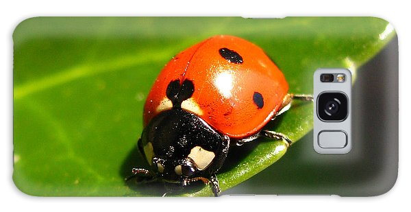 Ladybird Galaxy Case by Eva Csilla Horvath