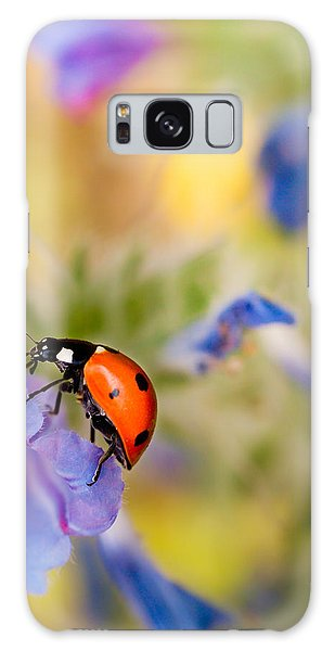 Ladybird Galaxy Case