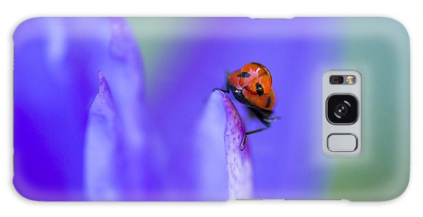 Galaxy Case featuring the photograph Ladybug Adventure by Priya Ghose