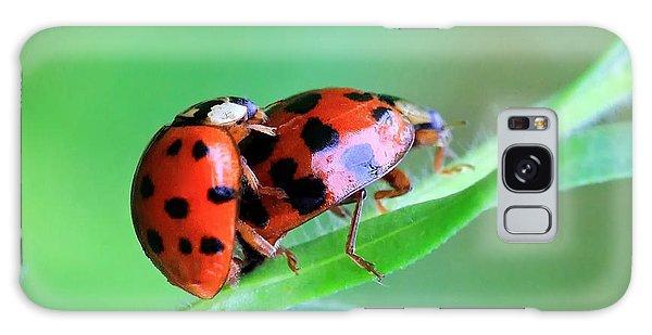 Ladybug And Gentlemanbug Galaxy Case