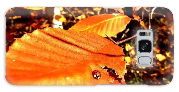 Ladybug At Fall Galaxy Case