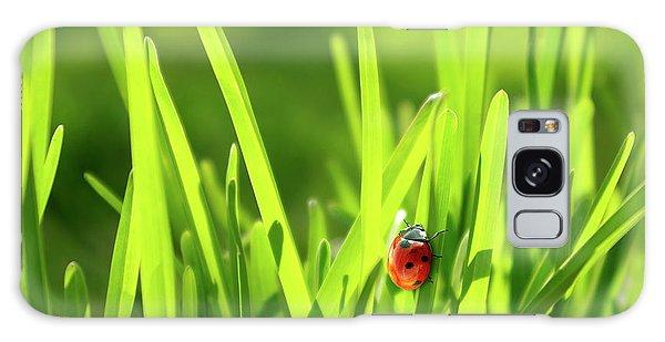 Green Galaxy Case - Ladybug In Grass by Carlos Caetano