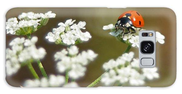 Ladybug In White Galaxy Case