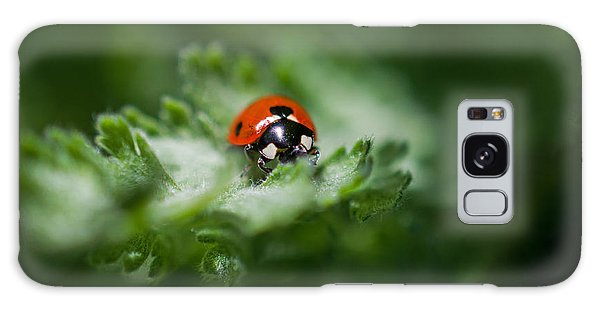 Ladybug On The Move Galaxy Case by Jordan Blackstone