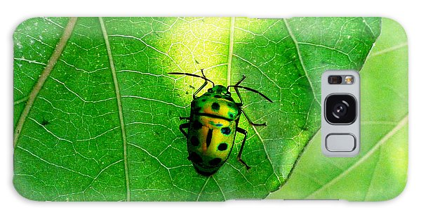 Ladybug Galaxy Case by Ramabhadran Thirupattur