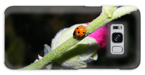Galaxy Case featuring the photograph Ladybug Taking An Evening Stroll by Ann E Robson
