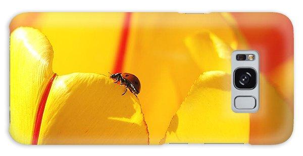 Ladybug - The Journey Galaxy Case by Susan  Dimitrakopoulos