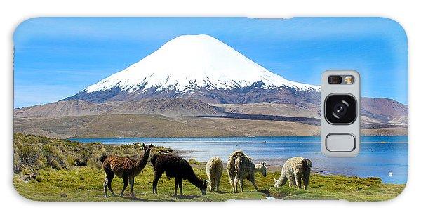Lake Chungara Chilean Andes Galaxy Case
