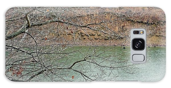 Lake Dunn In Winter Galaxy Case