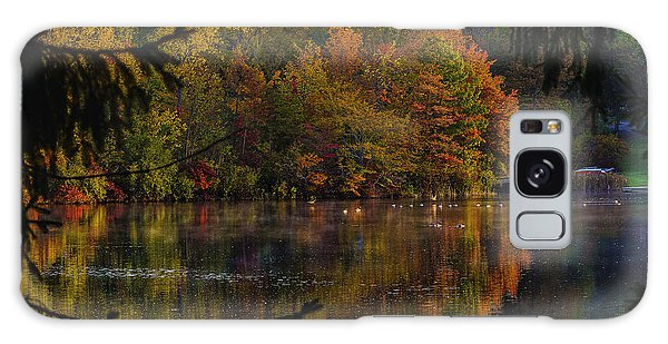 Lake Lucerne Ohio Galaxy Case