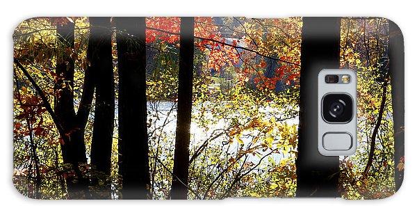 Galaxy Case - Lake Lynn by Frank Savarese