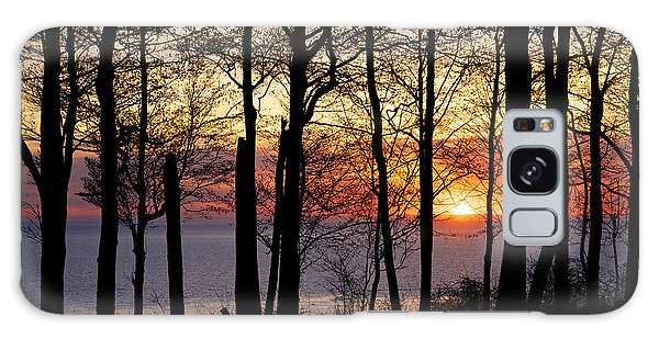 Lake Michigan Sunset With Silhouetted Trees Galaxy Case by Mary Lee Dereske