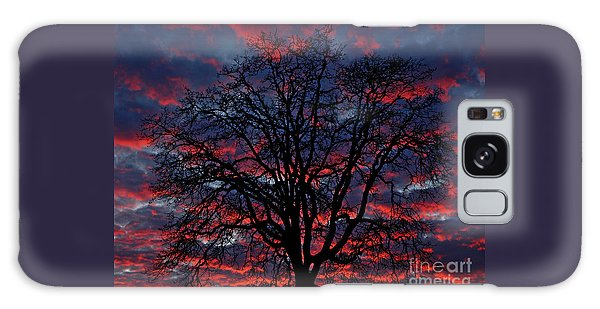 Lake Oswego Sunset Galaxy Case by Nick  Boren
