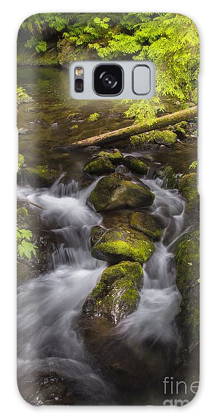 Lake Quinault Creek 2 Galaxy Case