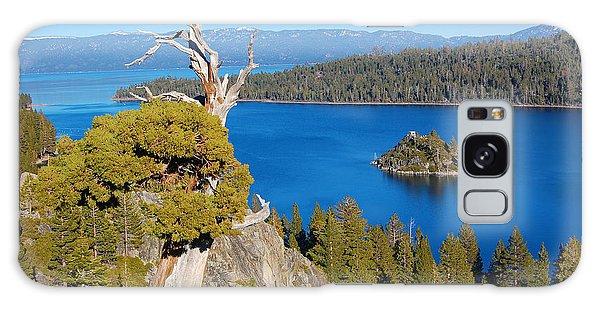 Lake Tahoe Reaching Tree Galaxy Case by Debra Thompson
